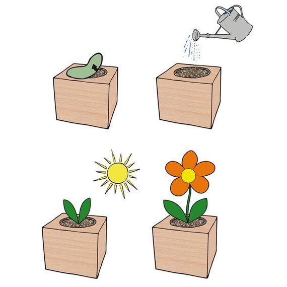 Sonnenblume im Holzwürfel - Bild 3