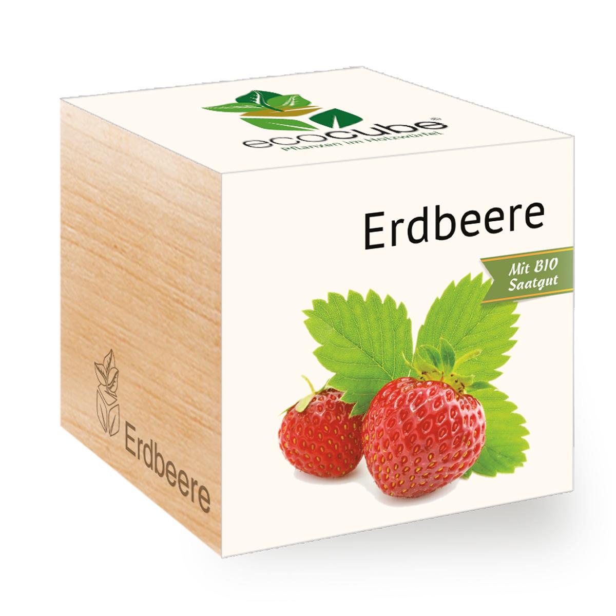 Erdbeere im Holzwürfel von Ecocube