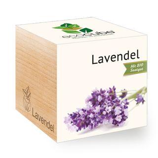 Lavendel im Holzwürfel