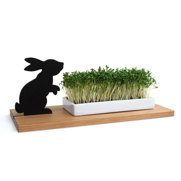 Kresseschale smart ´n´ green - Hase von Side by Side