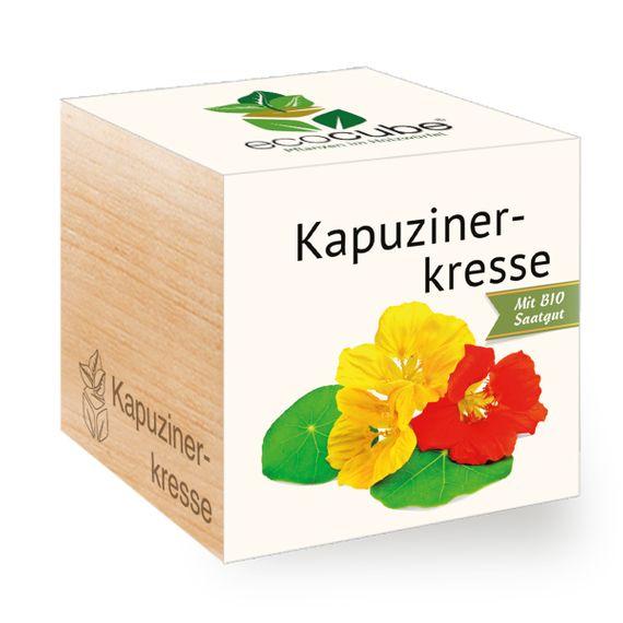 Kapuzinerkresse im Holzwürfel - Bild 1