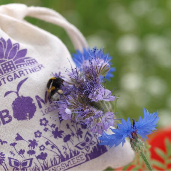 "8 Seedbombs ""Schmetterlingswiese"" im Mini-Jutebeutel - Bild 8"