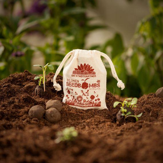 """8 Seedbombs """"Bienenschmaus"""" im Mini-Jutebeutel - Bild 1"""