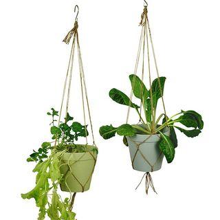 """Blumentopfset zum Hängen """"Spice It Up Large"""" - aus Bambusfasern und Mais"""