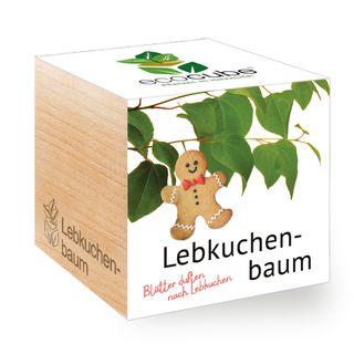 Lebkuchenbaum im Holzwürfel