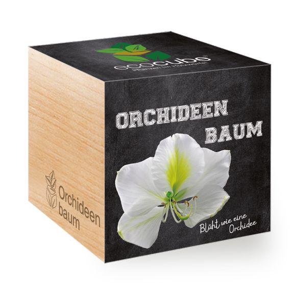 Orchideenbaum im Holzwürfel - Bild 1