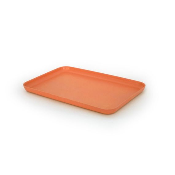 "BIOBU Bambino Tablett ""Medium Tray"" - Bild 4"