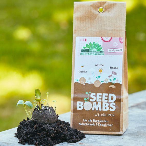 """5 Seedbombs in der Papiertüte """"Wildblumen"""" - Bild 1"""