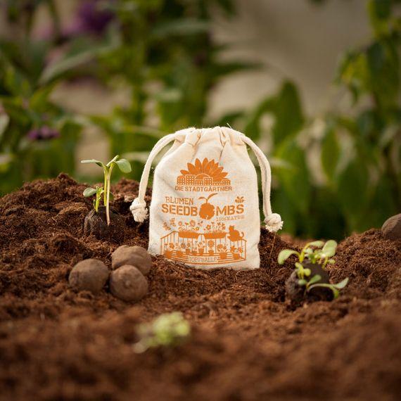 "8 Seedbombs ""Topfbälle"" im Mini-Jutebeutel - Bild"