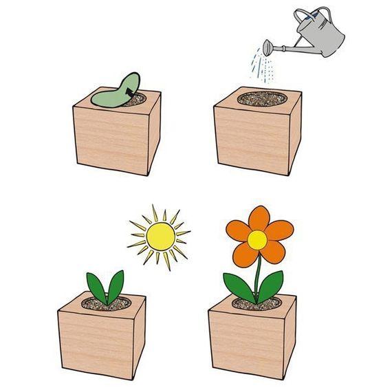 Kresse im Holzwürfel mit Bio-Samen - Bild 2