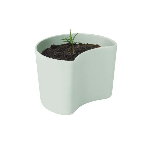 Blumentopf YOUR TREE - mit Samen, biologisch abbaubar - Bild 6