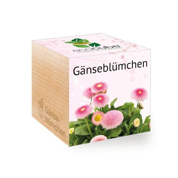 Gänseblümchen im Holzwürfel - Bild 1